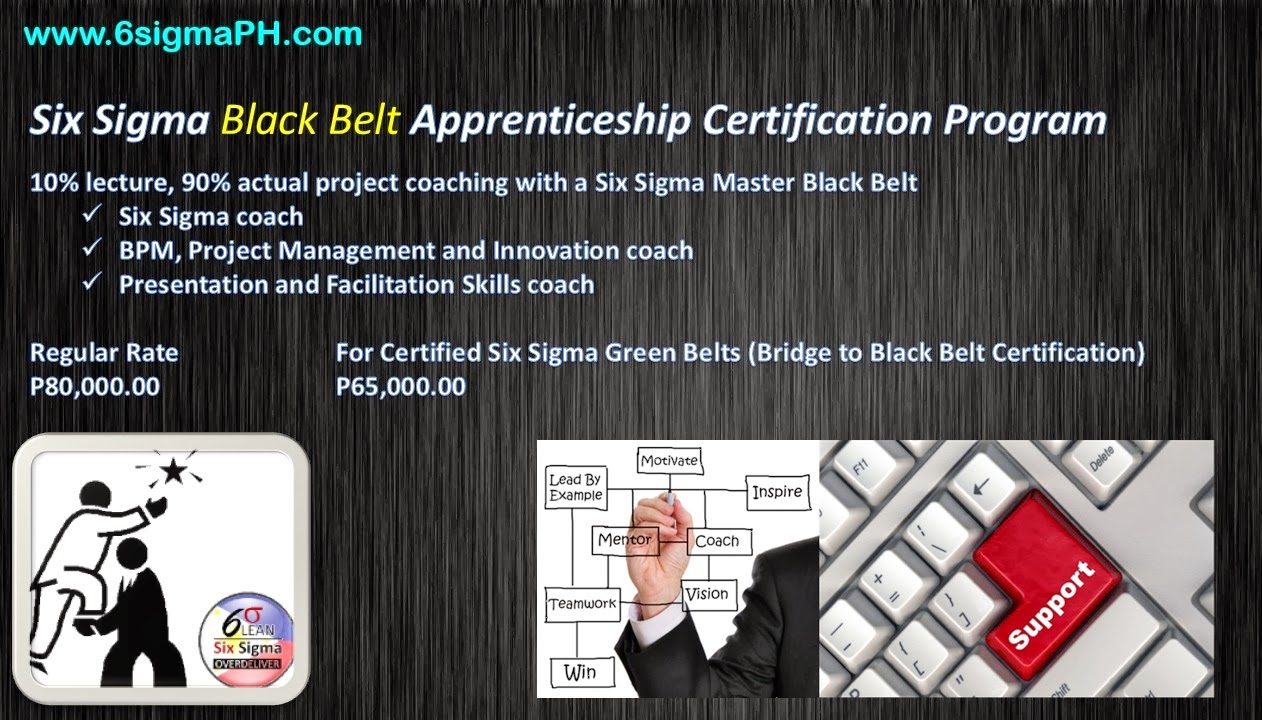 Six Sigma Philippines Training Consulting Apprentice Coaching