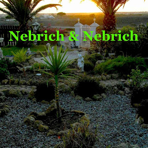Who is Firma Nebrich?