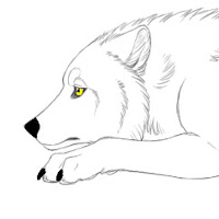 Icess The Arctic Wolf contact information