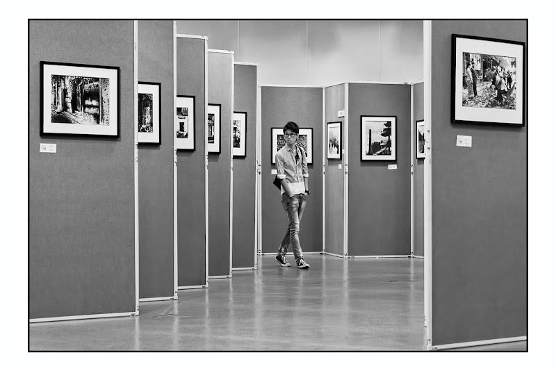 The Exhibition