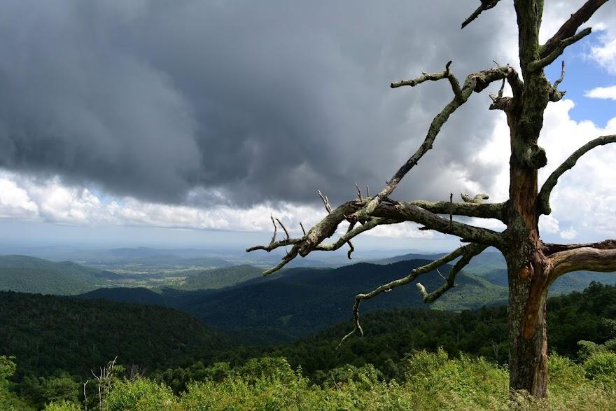 Национальный парк Шенандоа (Shenandoah National Park, VA)