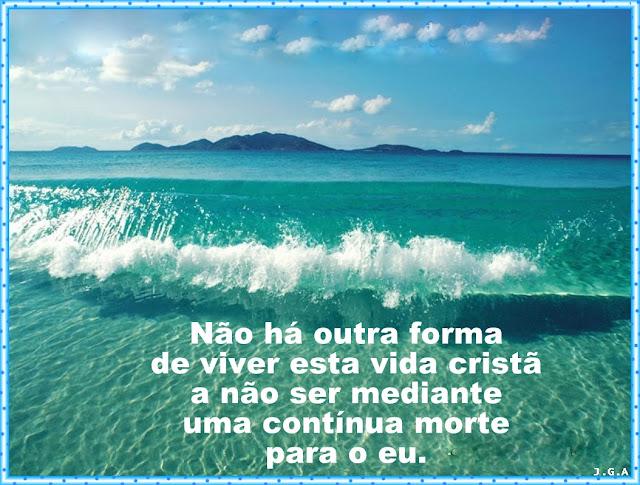 PEROLAS DA VIDA - 08