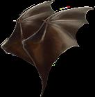 Ali di pipistrello