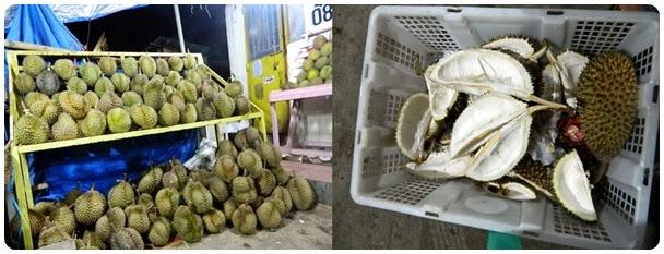 Makan Durian dan Manggis Sepuasnya!