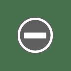 15万のカツオドリに占領された岩礁