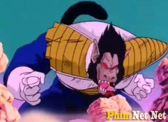 Bảy Viên Ngọc Rồng - Chiến Binh Saiyan - Dragon Ball Z - Image 1