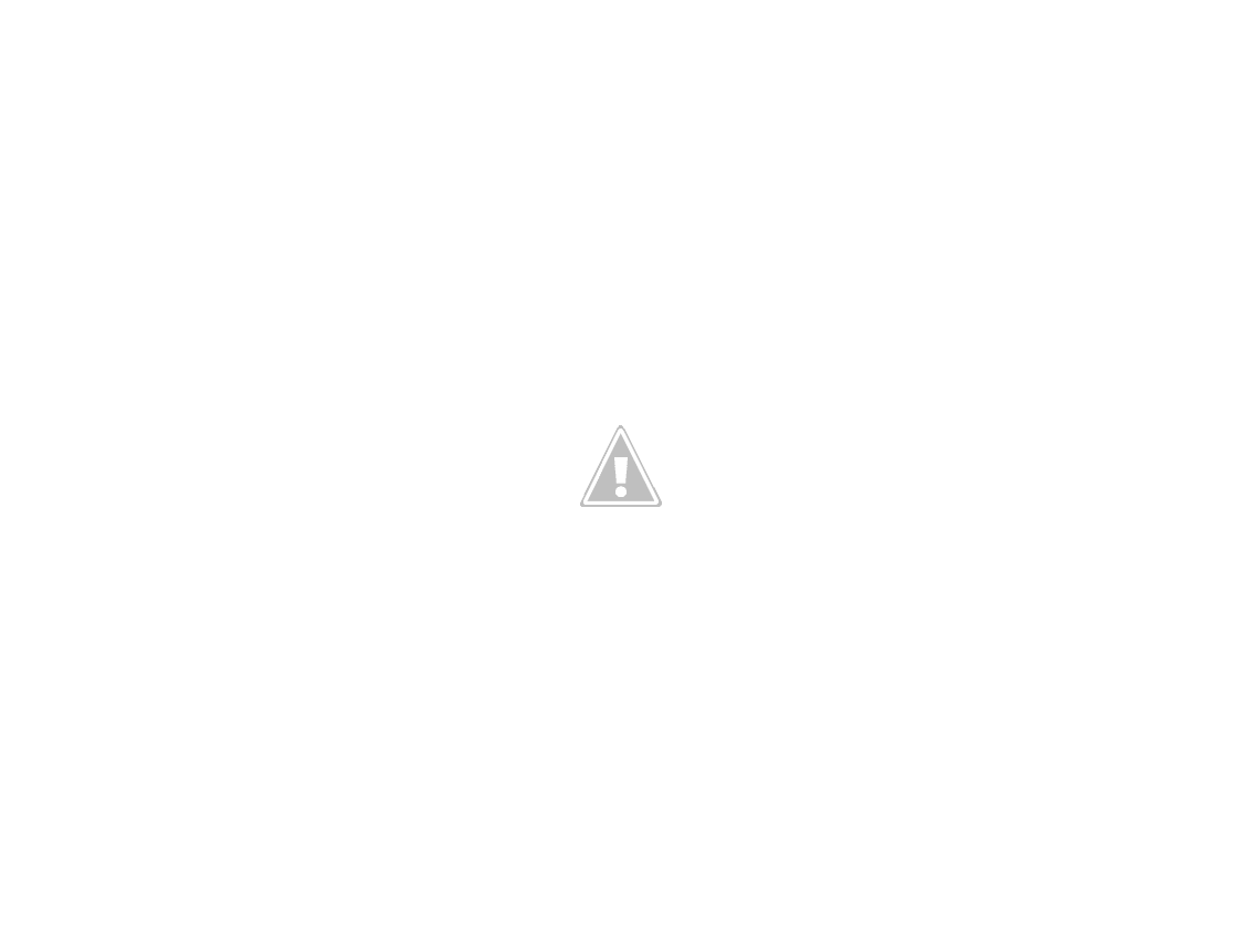 Grand Place and Christmas Tree