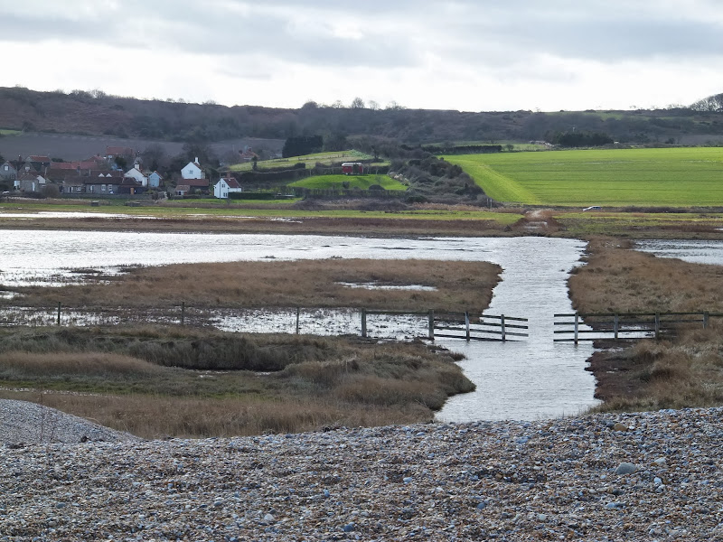 Salthouse marshes