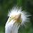 Steven Layten avatar image