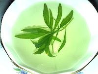 Tarragon Tea