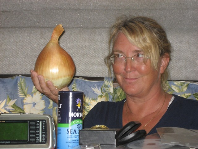 seriously large onions