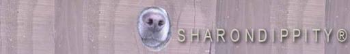 Sharondippity