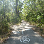 Shared footpath in Green Point Reserve on Lake Macquarie (403036)
