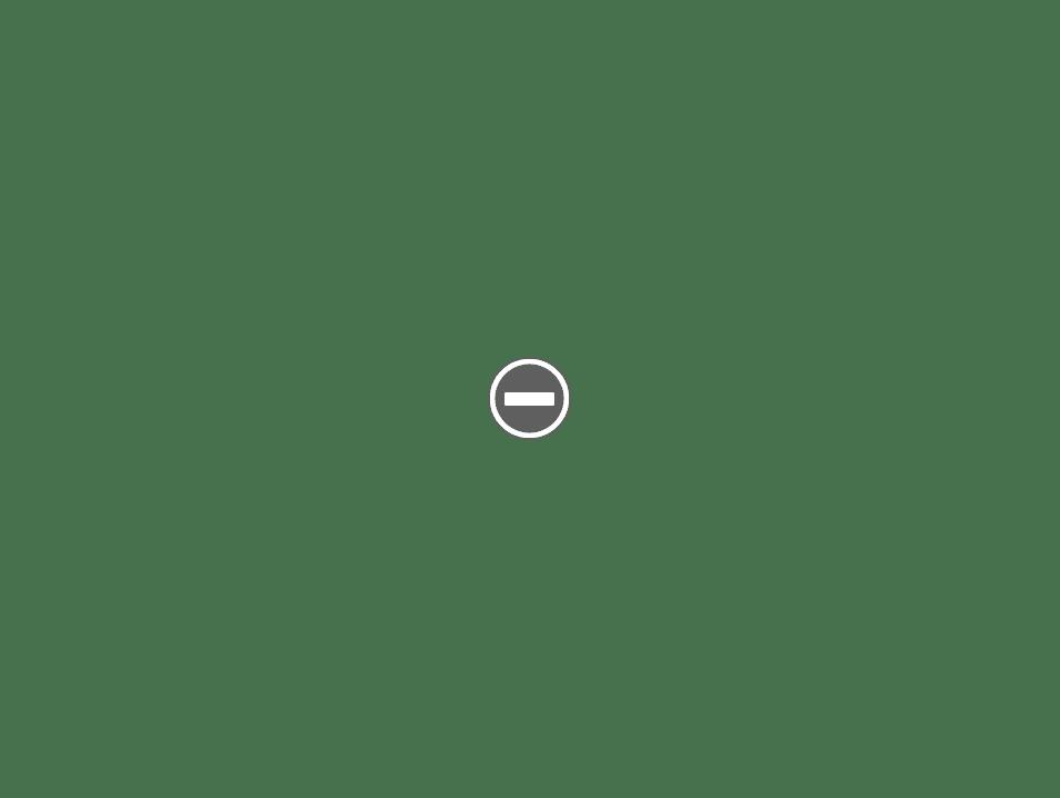 Valet AutoStrop Razor IMG_0676+%2528Custom%2529