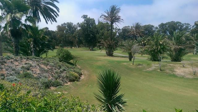 RIU Grand Palace Tikida Golf