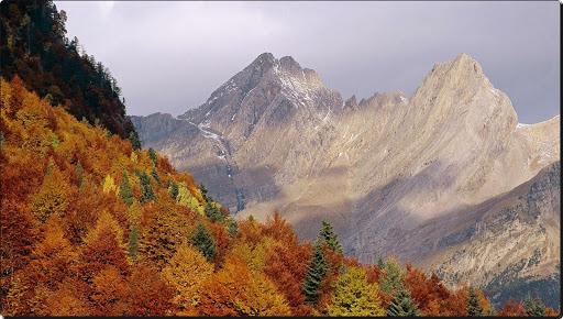 Pyrenees Valley, Huesca Province, Aragon, Spain (1).jpg
