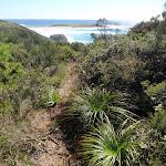 Track near Timber Beach (247174)