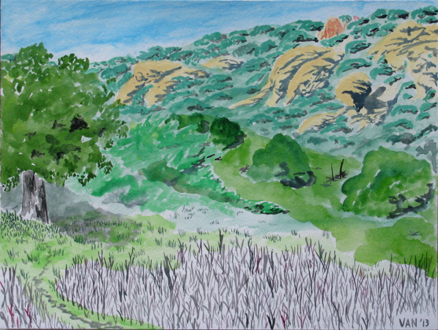 watercolor of the oak tree at the edge of meadow in Forbush Flat