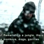 All of Ramallah is a jungle, there are monkeys, dogs, gorillas.