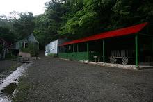 Fotos a Cafetal de la Hacienda Buena Vista.