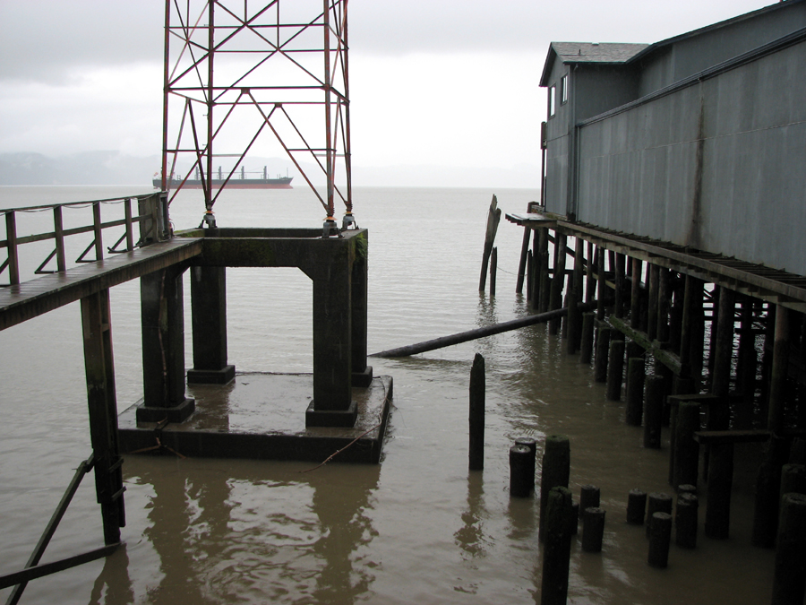 Logs and pilings on the Columbia River