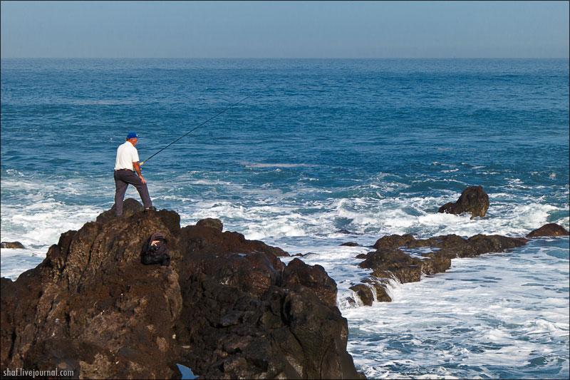 http://lh4.googleusercontent.com/-HWtgPPPW8Nk/UN9qlCegZhI/AAAAAAAAEJo/hAObGBGF7MQ/s800/20121221-120313_Tenerife_Puerto_de_la_Cruz.jpg