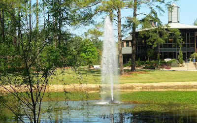 Cypress Pond Fountain