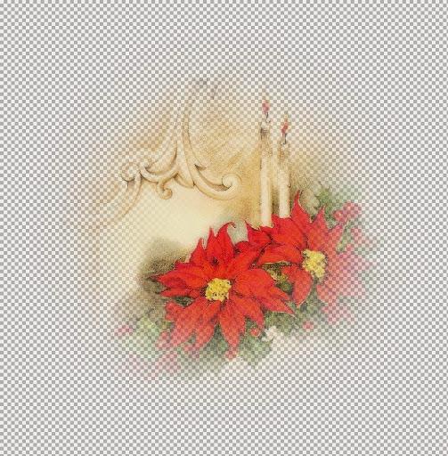 AMT~Poinsettiasm_KK.jpg