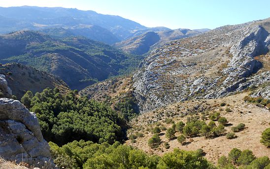 Abfahrt durch Hügel von der Passhöhe Puerto del Viento (1190 m), Andalusien