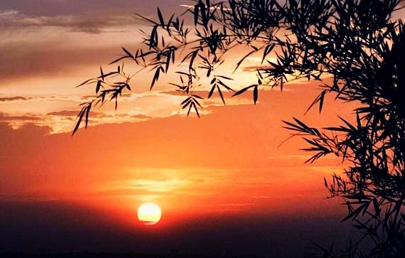 Image result for hoàng hôn tắt nắng
