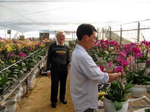 den tham vuon hoa nhiet doi moc chau%2B%287%29 Đến thăm vườn hoa nhiệt đới Mộc Châu