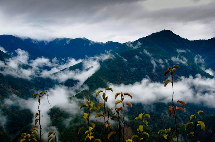 武陵農場與福壽山森之美