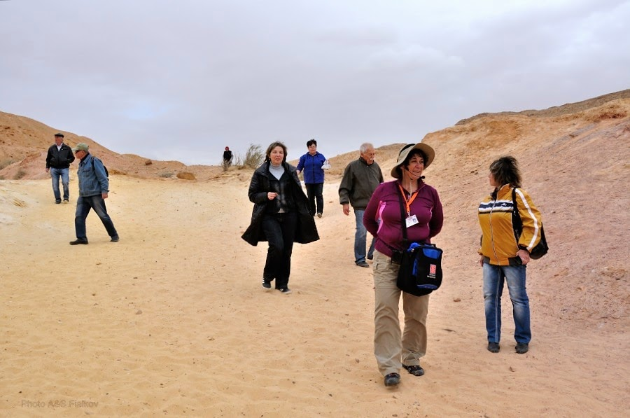 На цветных песках. Экскурсия гида Светланы Фиалковой в пустыню Негев.