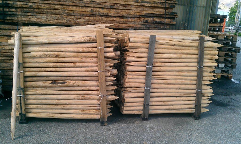Kastanien Holz Pfähle angespitzt. Rundholz roh top Qualität