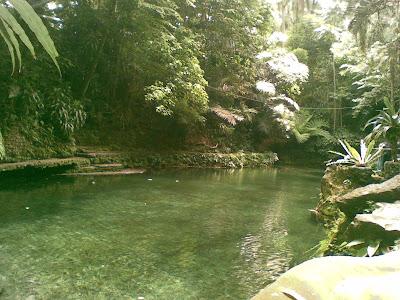 Natural-looking pool