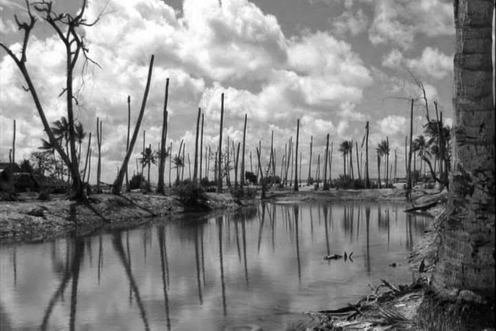 Kiribati - landscape changing as a result of climate change, 2008