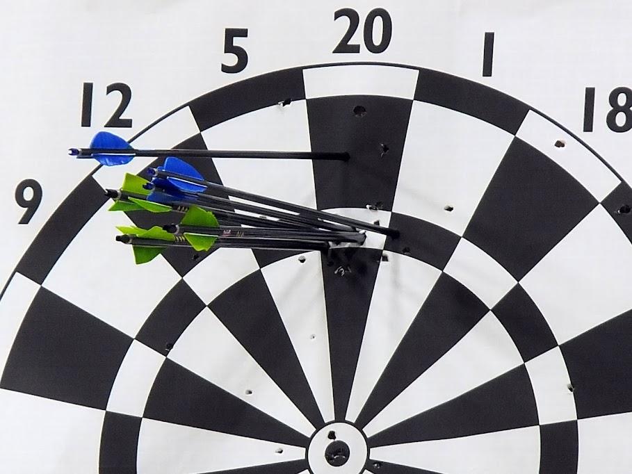 Archery Darts 2014