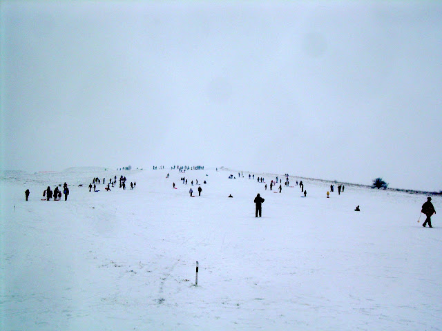 Sledging on Therfield Heath
