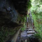 Track above Empress Falls (182523)