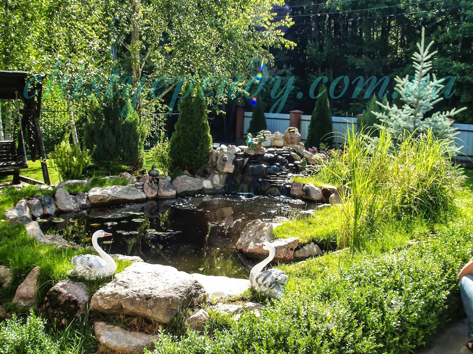 Декоративный пруд. Чистые пруды