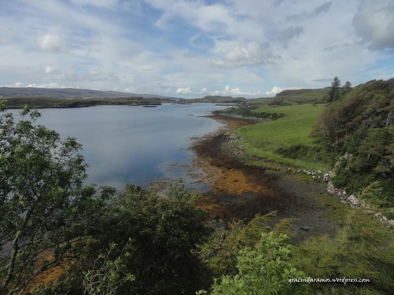 - Passeando até à Escócia! - Página 15 DSC04190