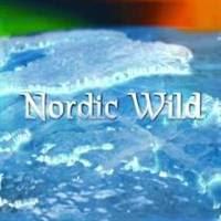Nordic Wild - Bắc âu hoang dã