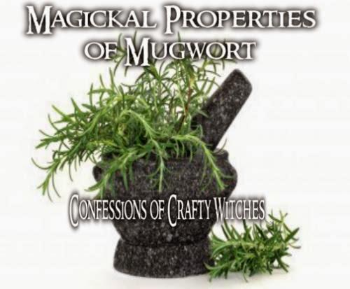 Magickal Properties Of Mugwort