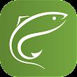 ClicAndFish