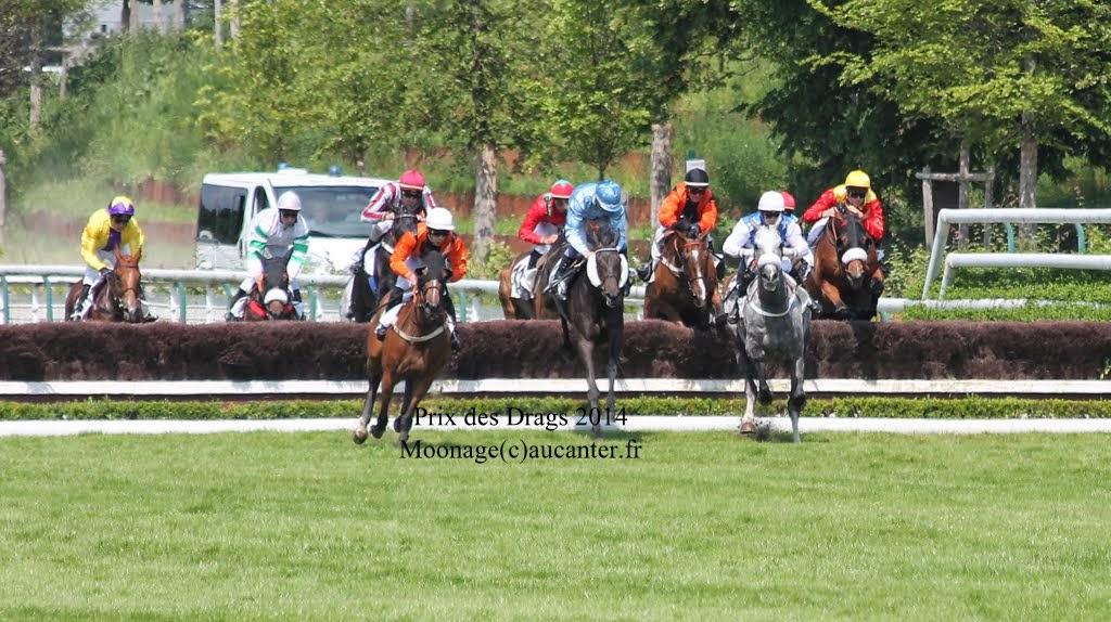 Photos Auteuil 8-06-2014  IMG_1782