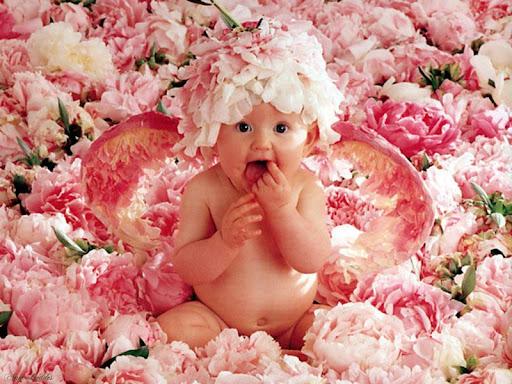 L'enfant c'est comme une fleur ''(que l'on sème)'' ''(que l'on aime)'' avec amour/ Photo