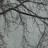 sydney maddix avatar image