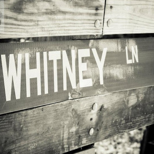 Whitney Lane Photo 27