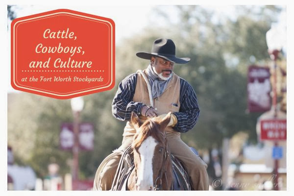 Cattle, Cowboys, and Culture at the Fort Worth Stockyards