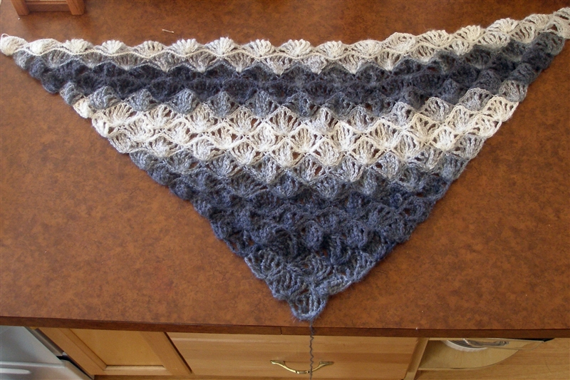 Crocheting Blind Crochet Project Dragonfly Shawl